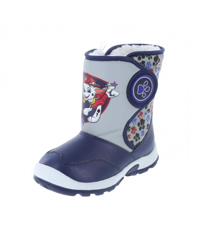 Paw Patrol Kids Toddler Weather