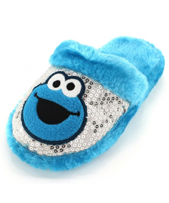 Sesame Street Cookie Monster Slippers